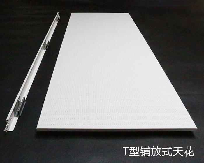 T型铺放式天花 (1)